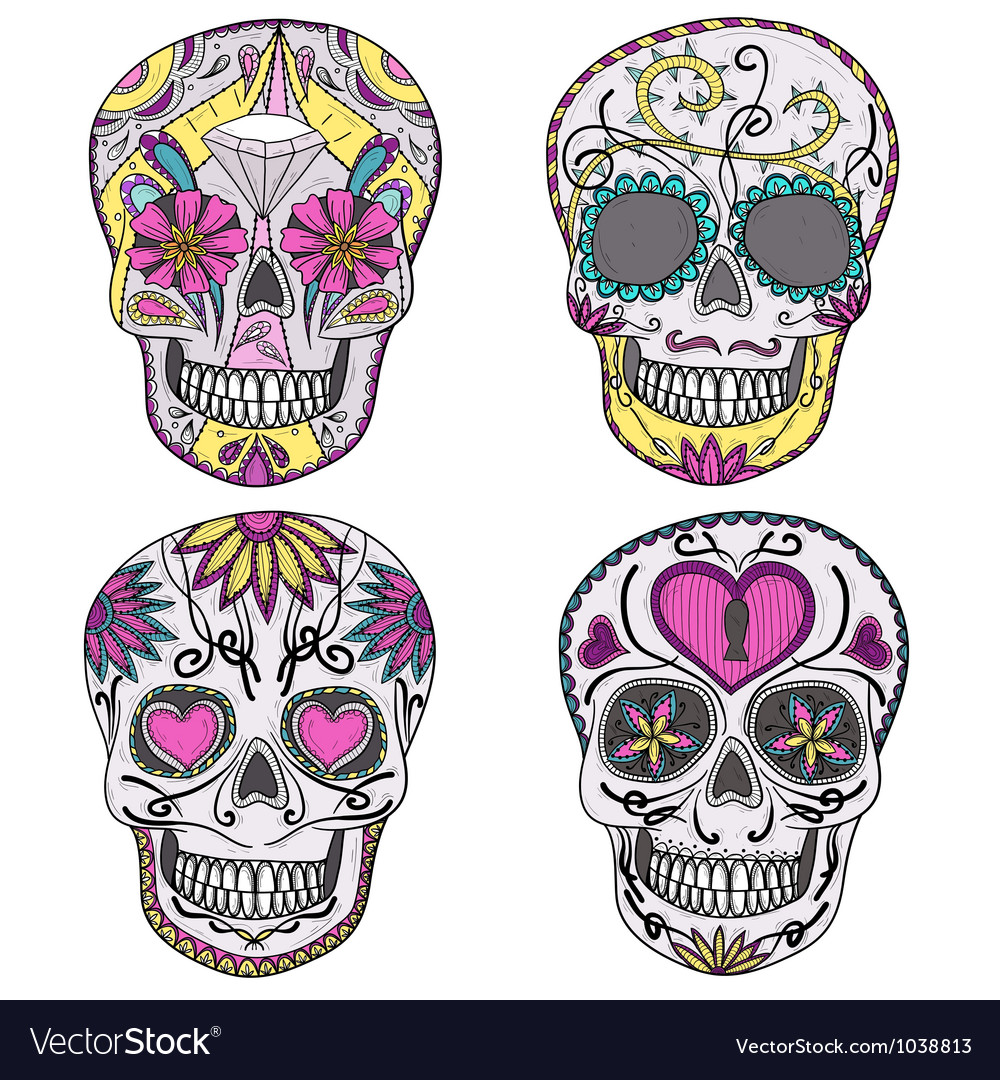 Mexican sugar skulls with floral pattern vector image