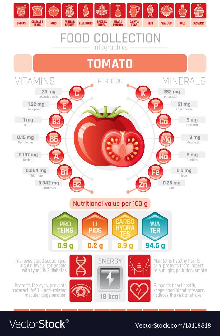 Food infographics poster tomato vegetable