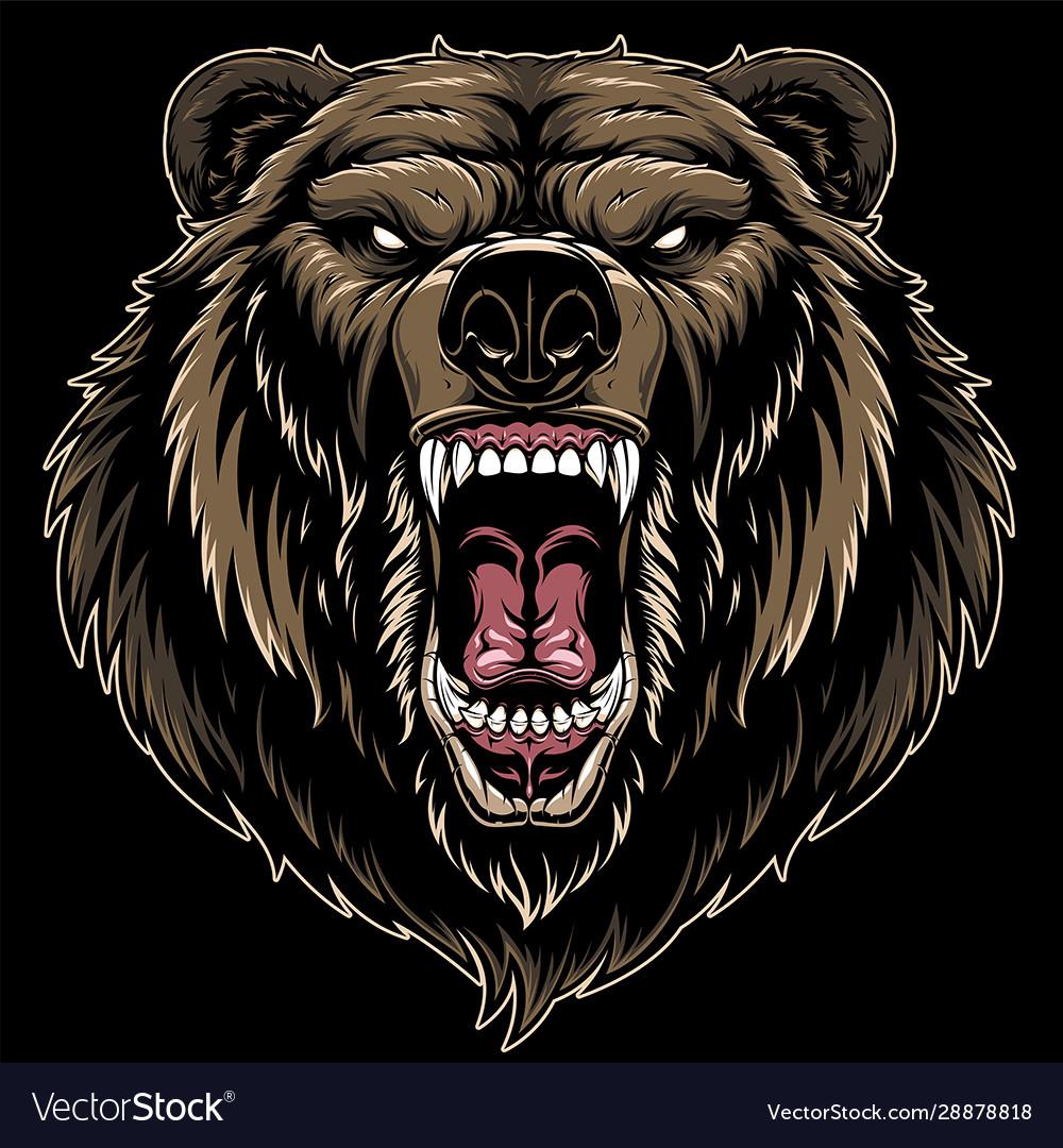 Head a ferocious grizzly bear