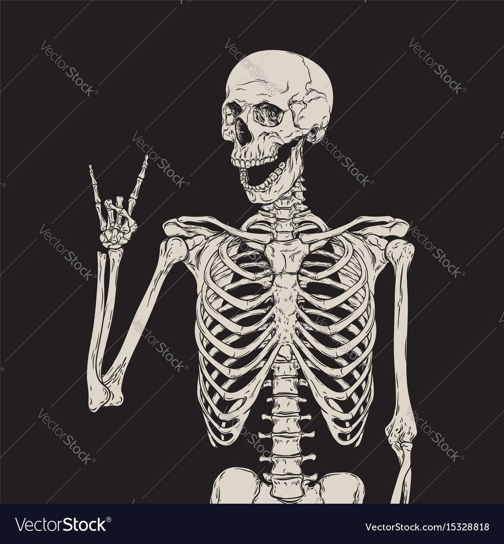 Human skeleton posing over black background