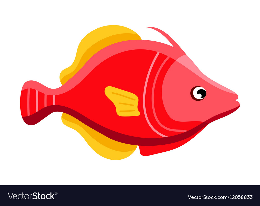 Colorful reef tropical fish Royalty Free Vector Image