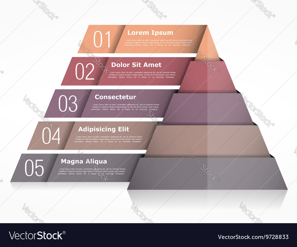 Pyramid Chart with Five Elements vector image