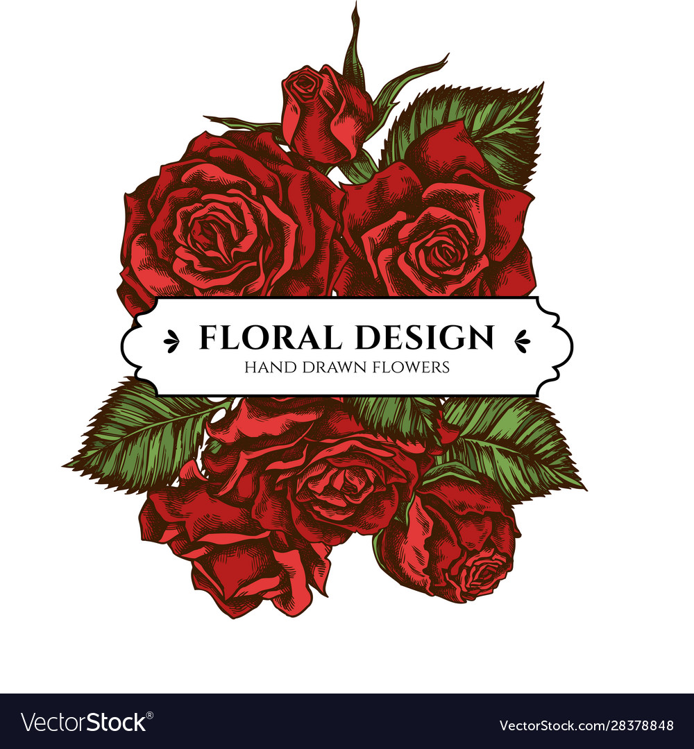 Floral bouquet design with colored roses vector