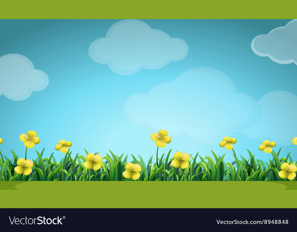 Scene with yellow flowers in the field royalty free vector scene with yellow flowers in the field vector image mightylinksfo