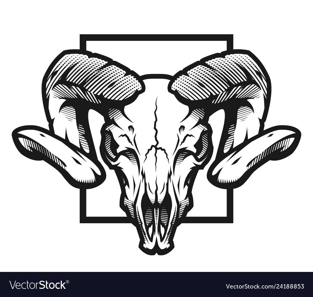 Ram skull black and white emblem