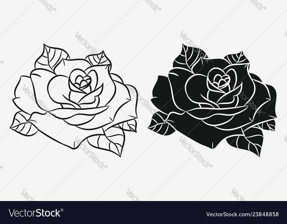 Rose flower silhouette and outline