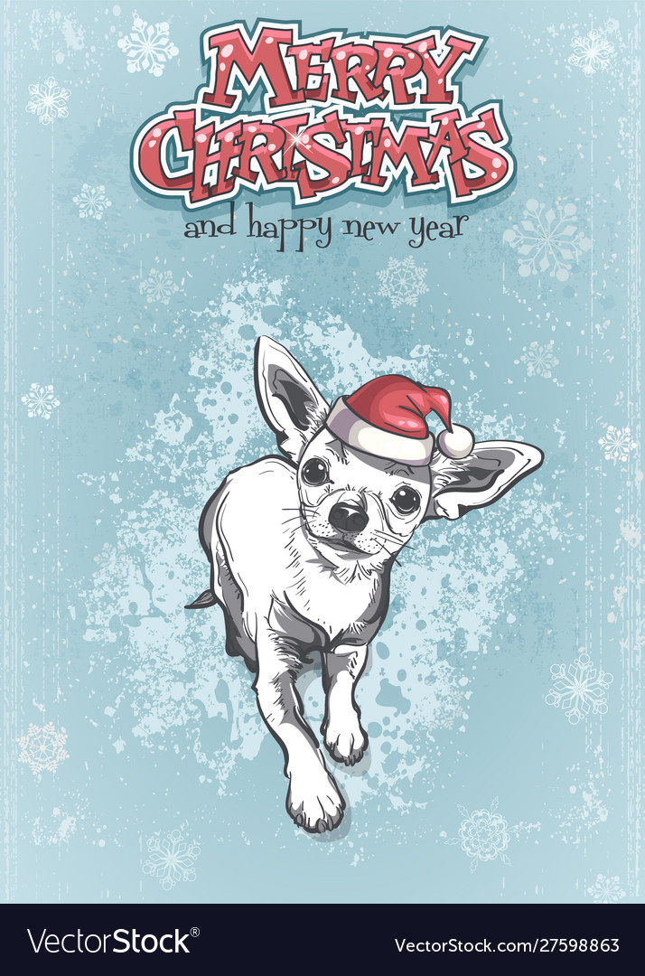 Funny chihuahua in santa hat merry christmas