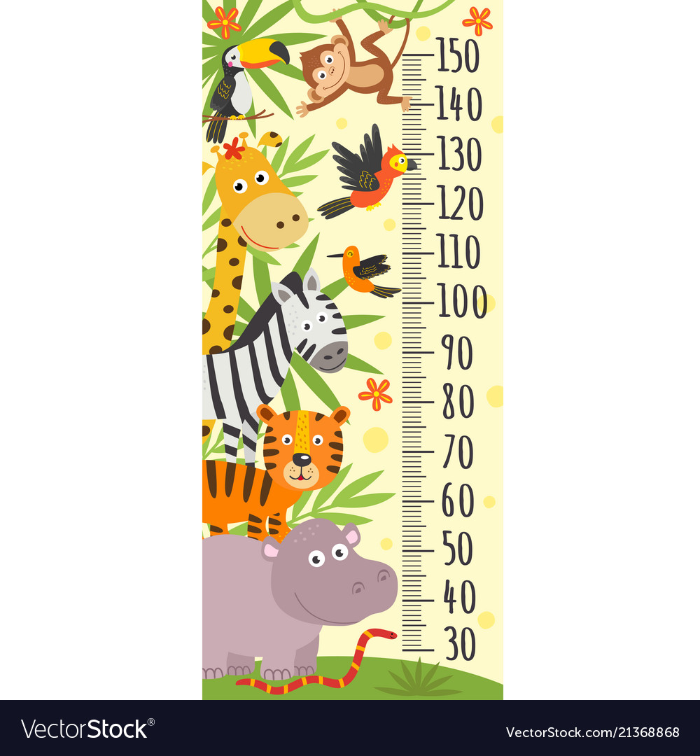 Growth measure with jungle animals