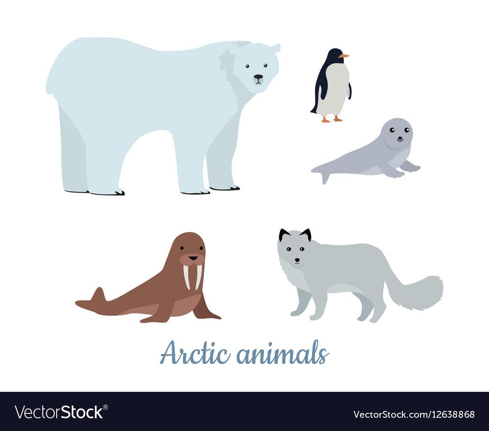 Set of Arctic Animals in Flat Design