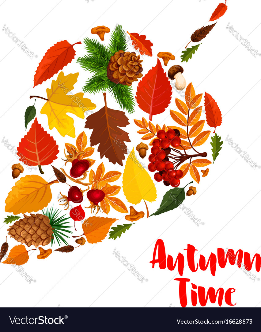 Autumn leaf poster with fall foliage mushroom vector image