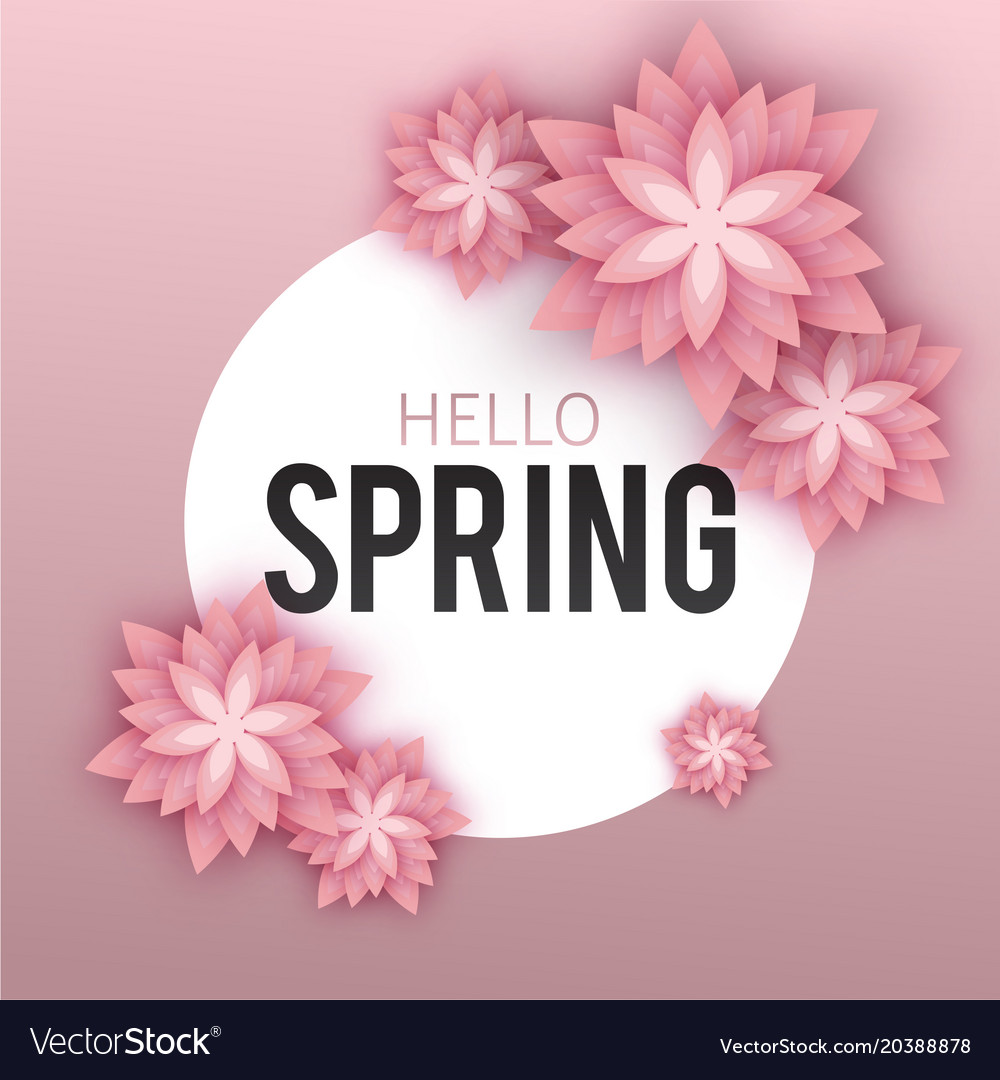 Hello spring floral greeting card paper flowers vector image mightylinksfo