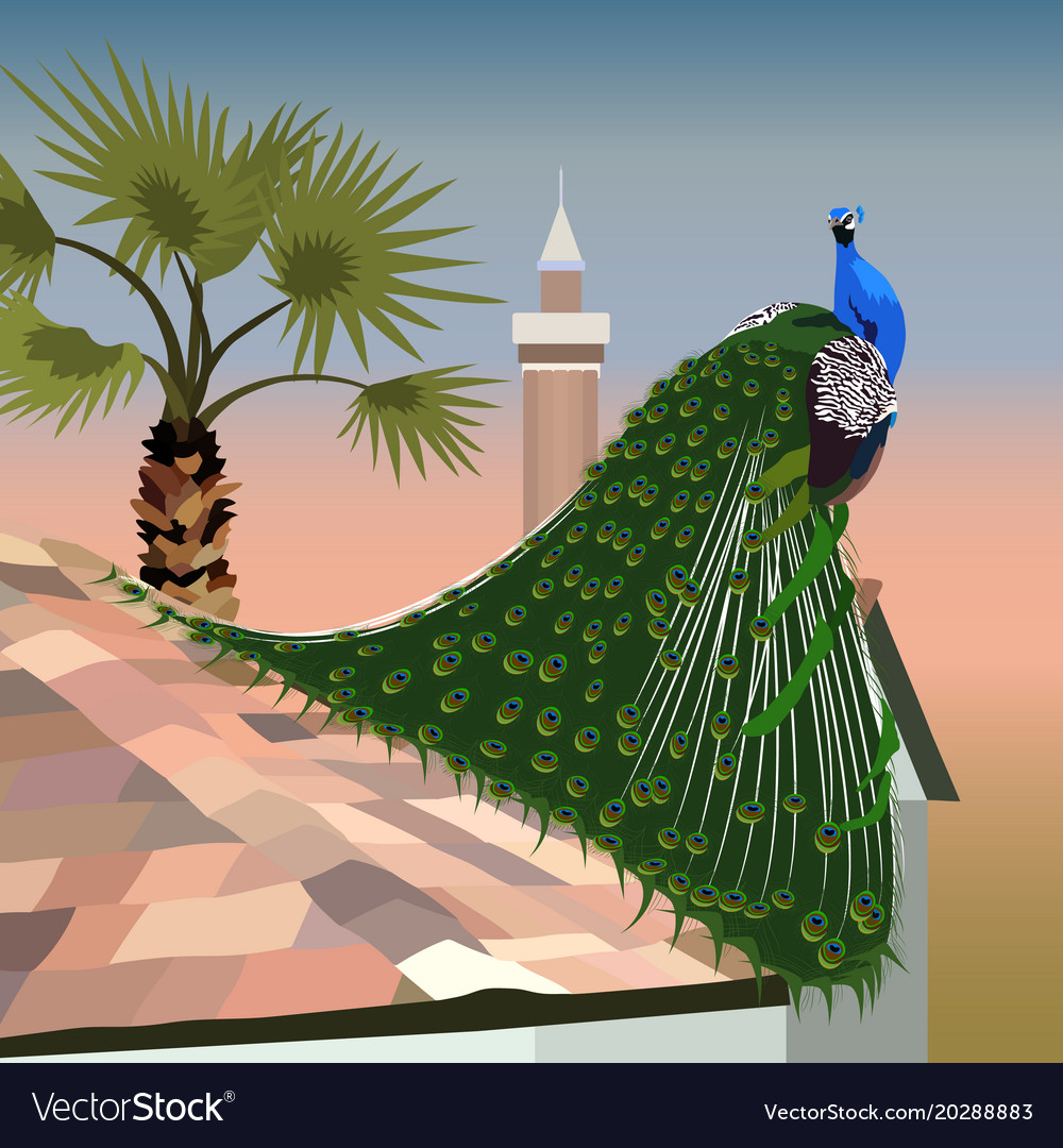 Realistic peacock on a tiled roof on the backgroun vector image