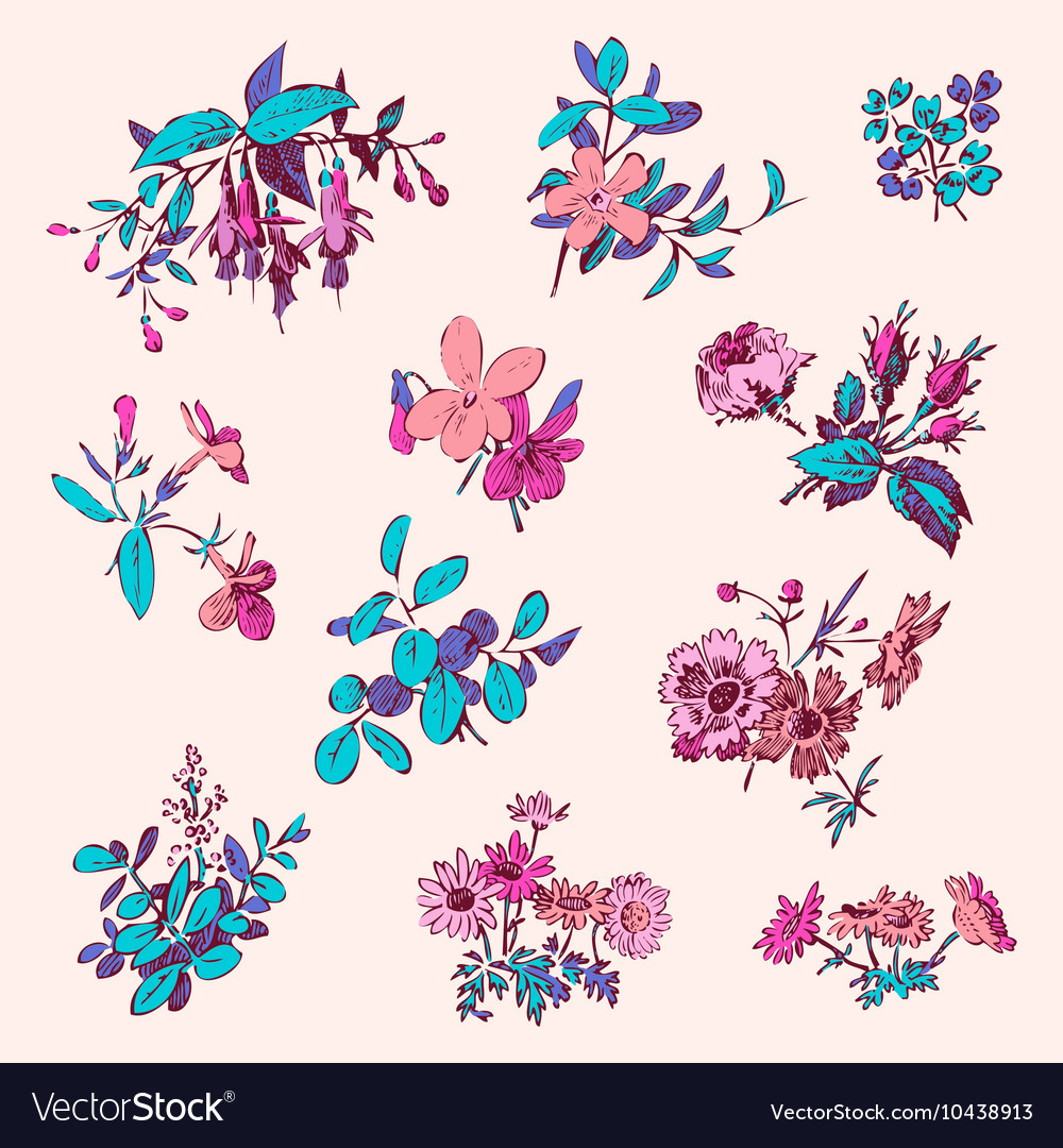 Meadow flower and leaf wreath isolated on pink set vector image