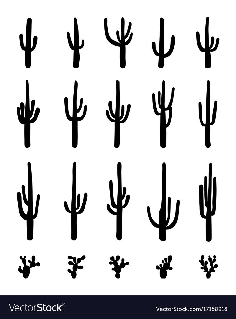 silhouettes of different cactus royalty free vector image