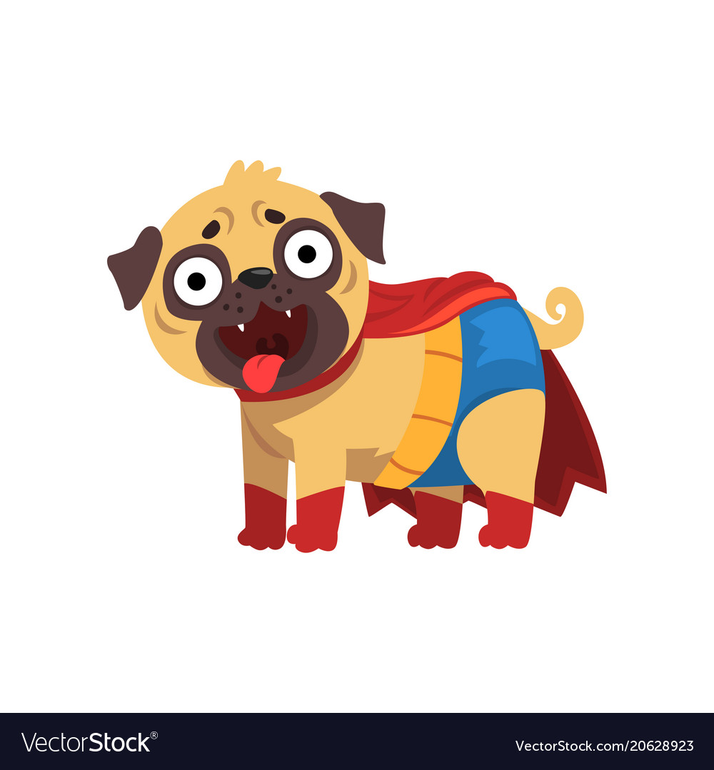 Funny pug dog character in a superhero costume