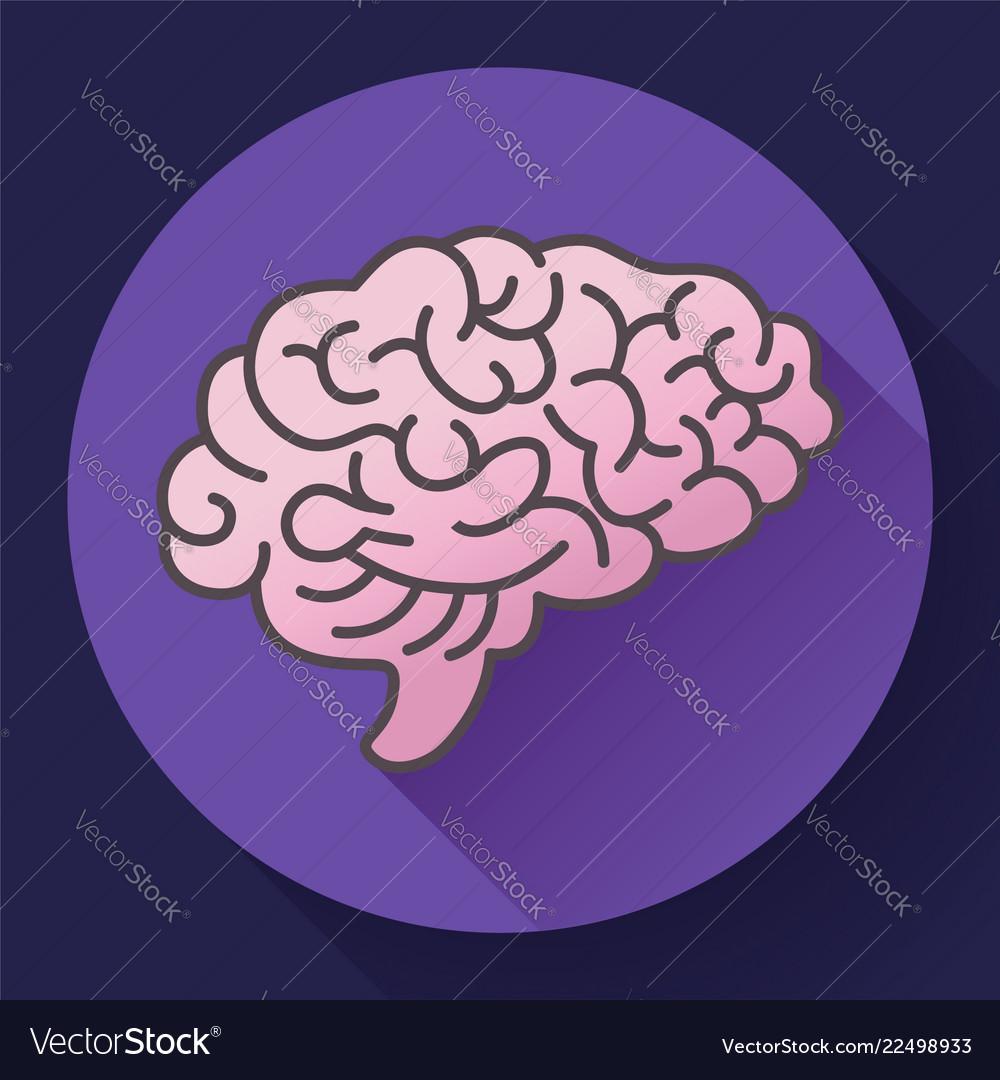 Human brain icon symbol of intellect study