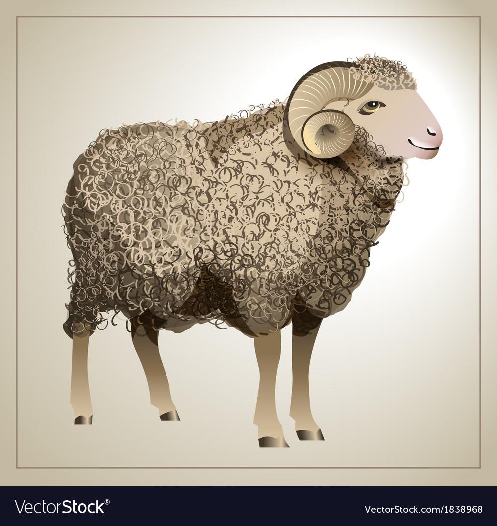 realistic-sheep-vector-1838968.jpg