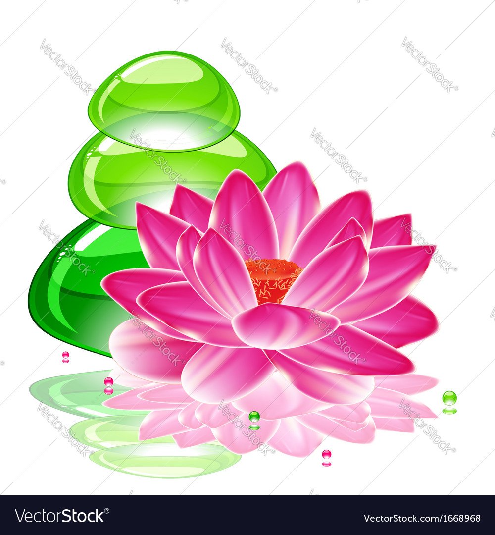 Spa background with a lotus flower and transparent spa background with a lotus flower and transparent vector image izmirmasajfo