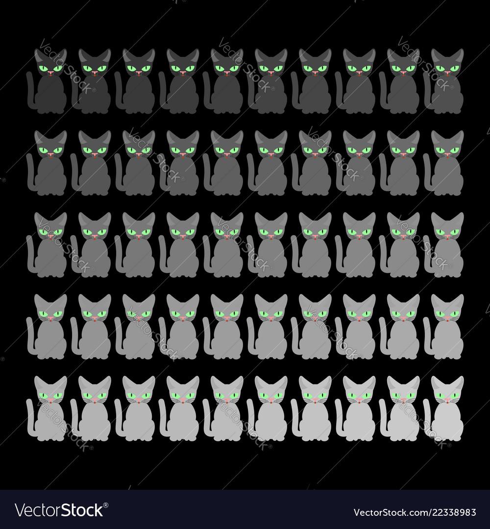 50 cats home pet gray shades set