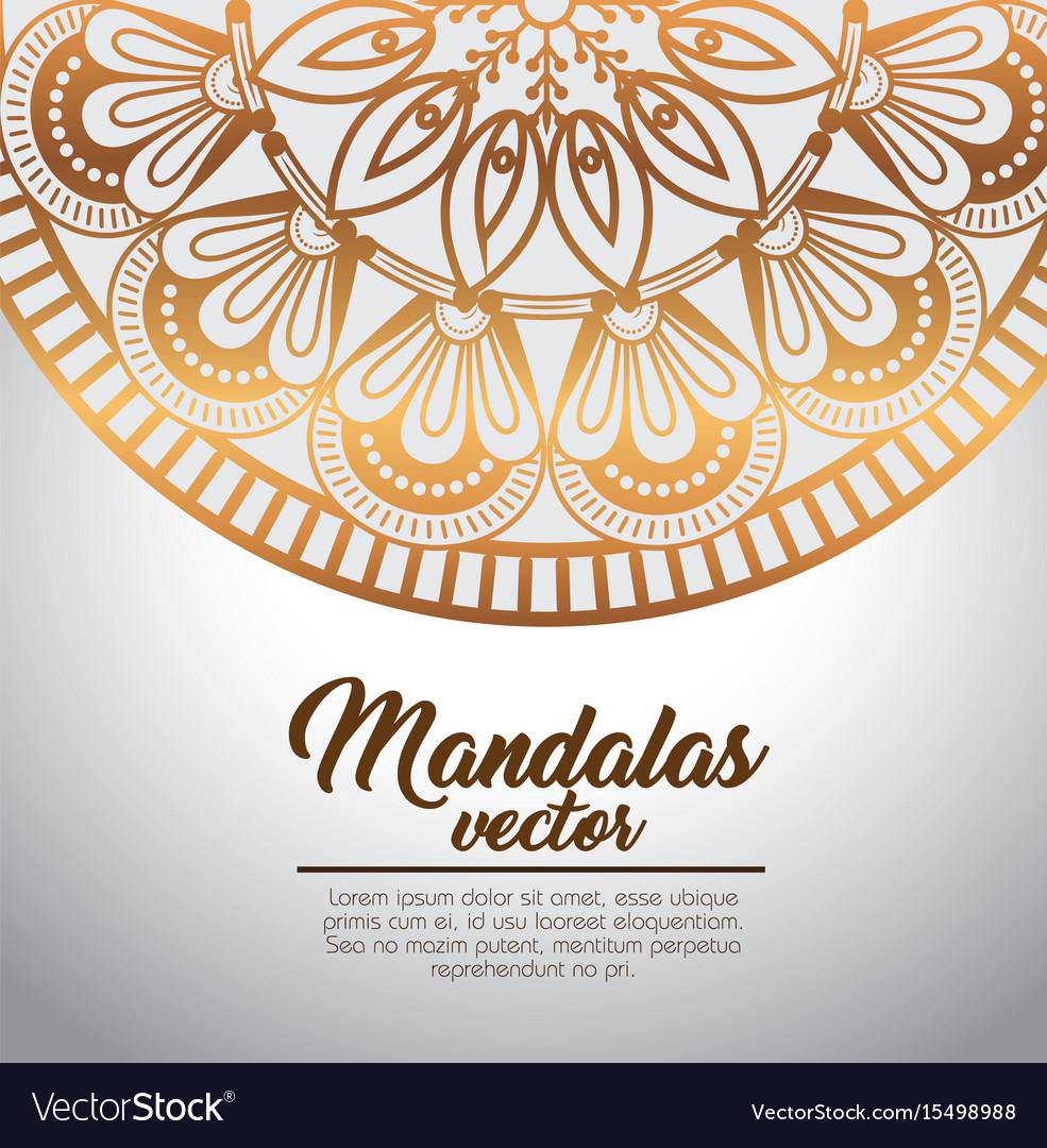 Mandala vintage template Royalty Free Vector Image