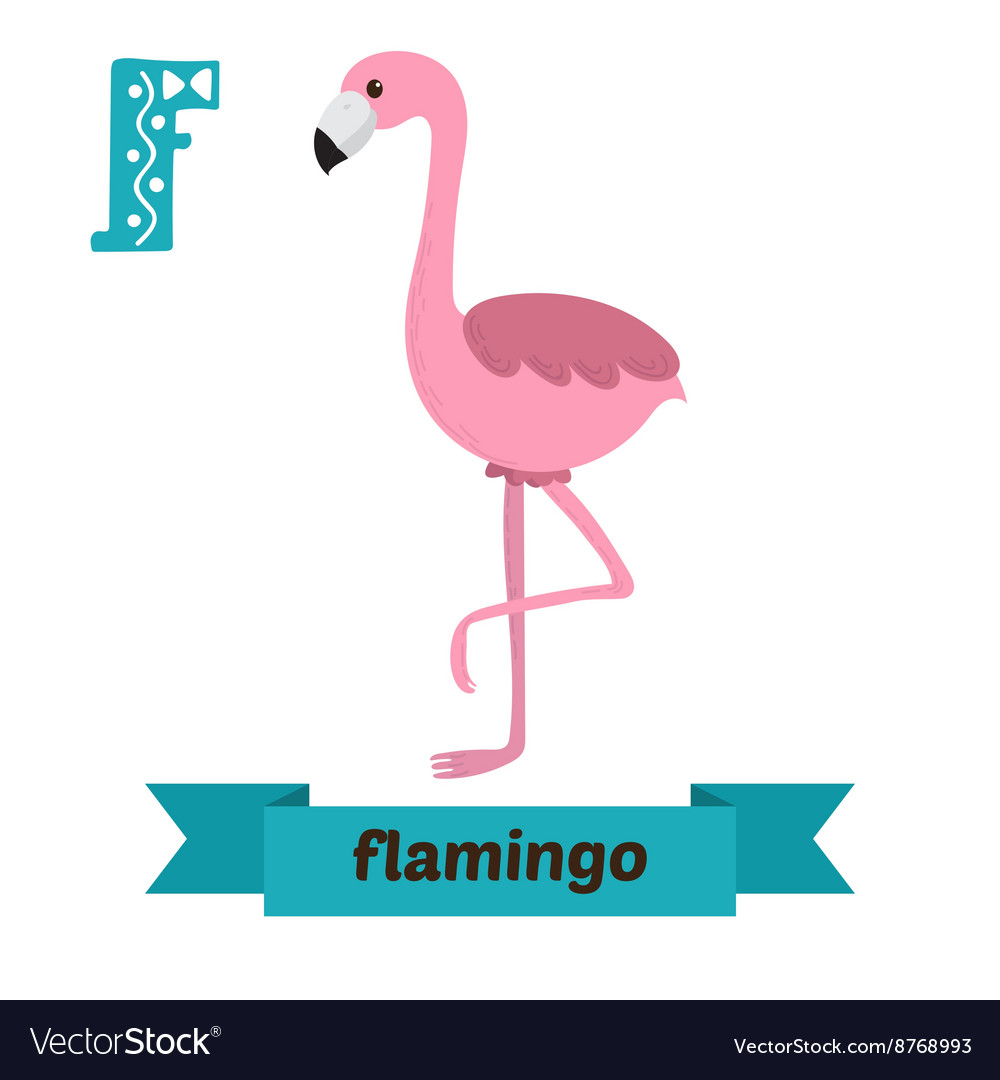 Flamingo F letter Cute children animal alphabet in vector image