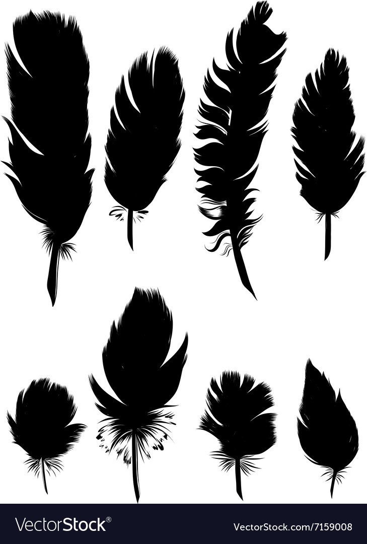 Vintage Feather set Hand-drawn