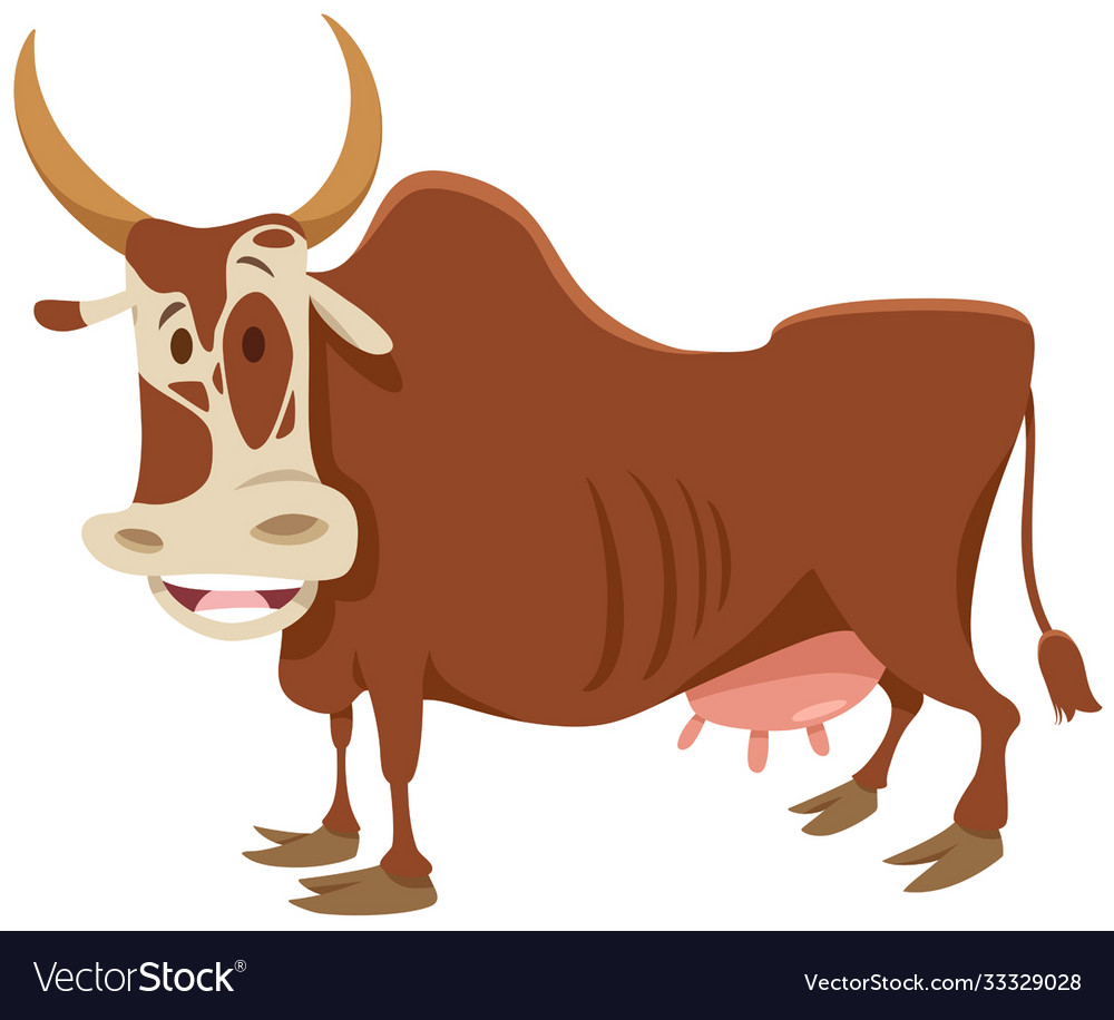 Funny cartoon zebu farm animal character
