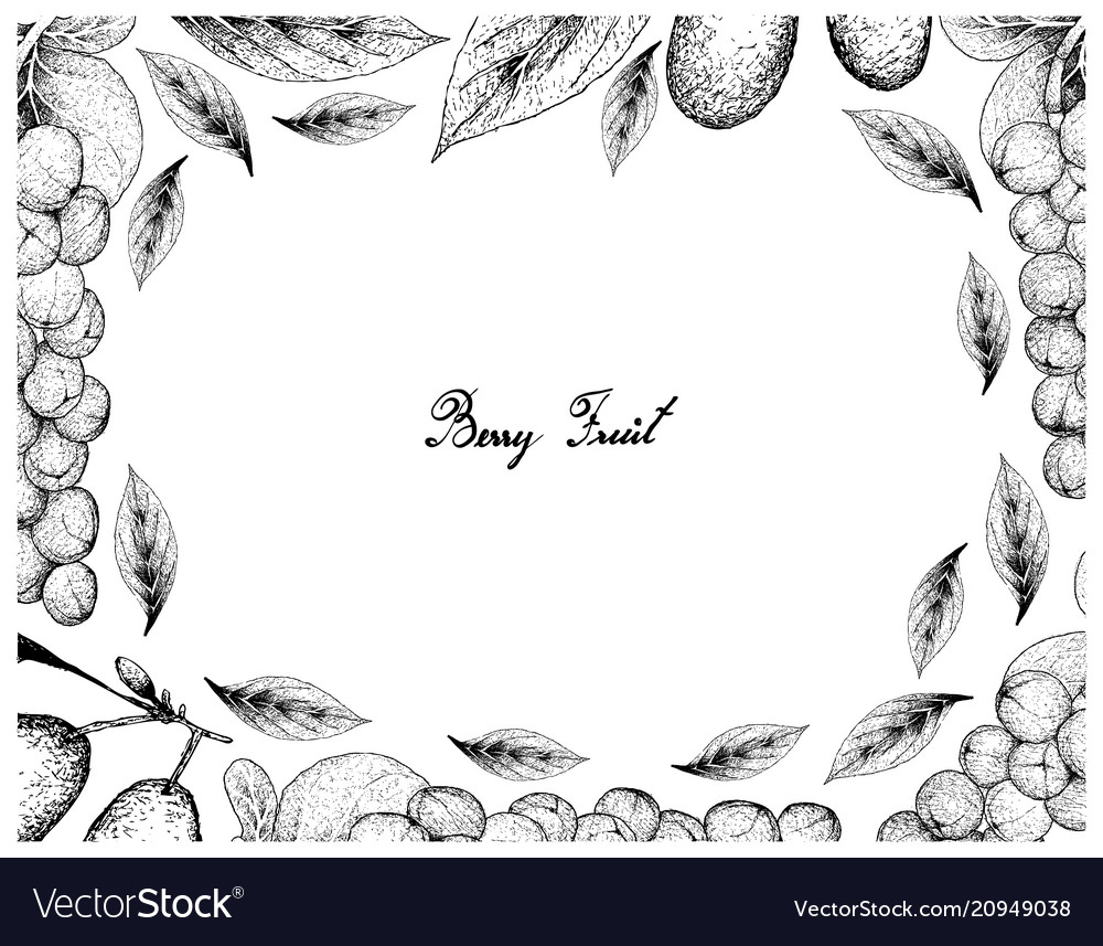 Hand drawn frame of coccoloba uvifera and cornelia