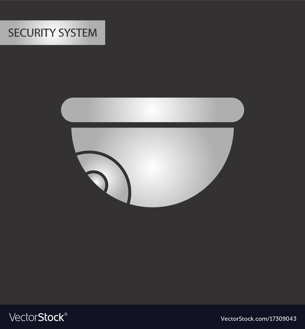 Black and white style security camera