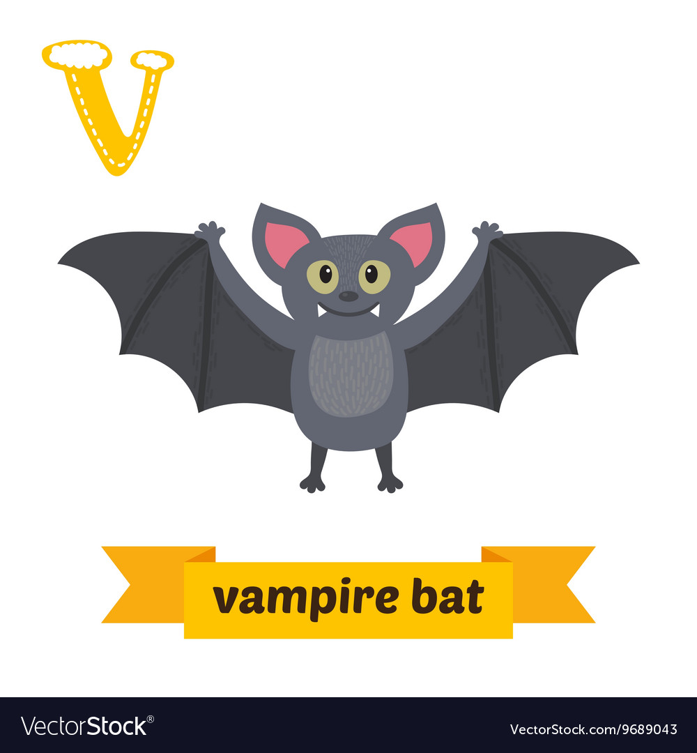 Playing with each other s bats cute abode