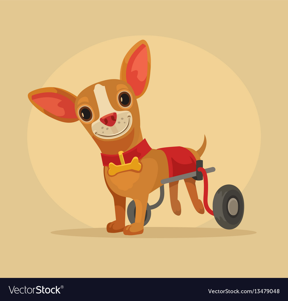 Disabled dog character in wheelchair vector image