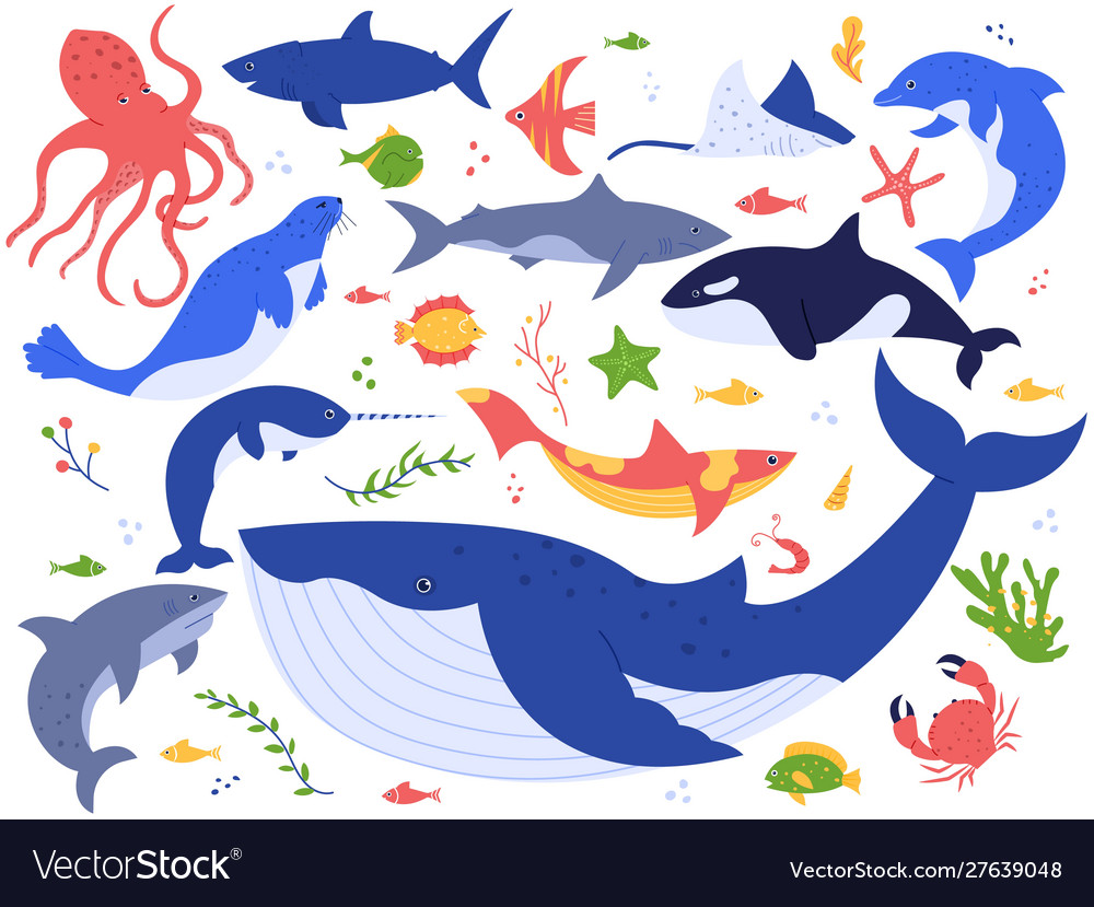 Ocean animals cute fish orca shark and blue