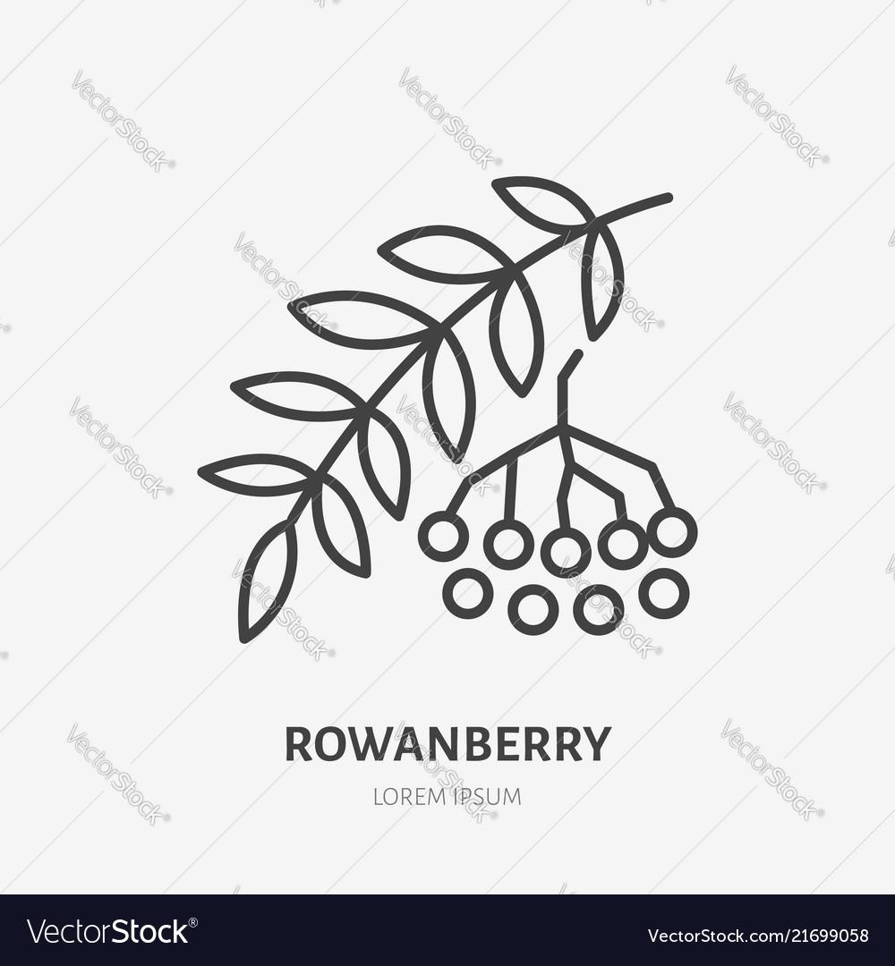 Rowanberry flat line icon rowan sign healthy