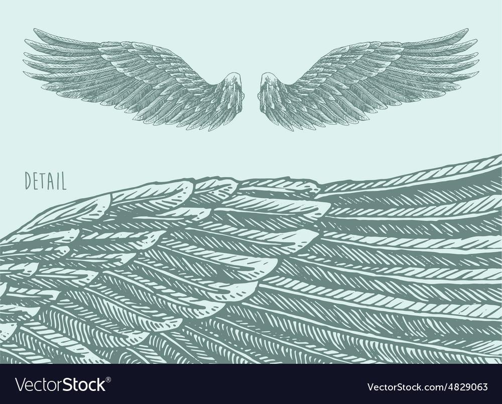 Angel Wings Engraved sketch