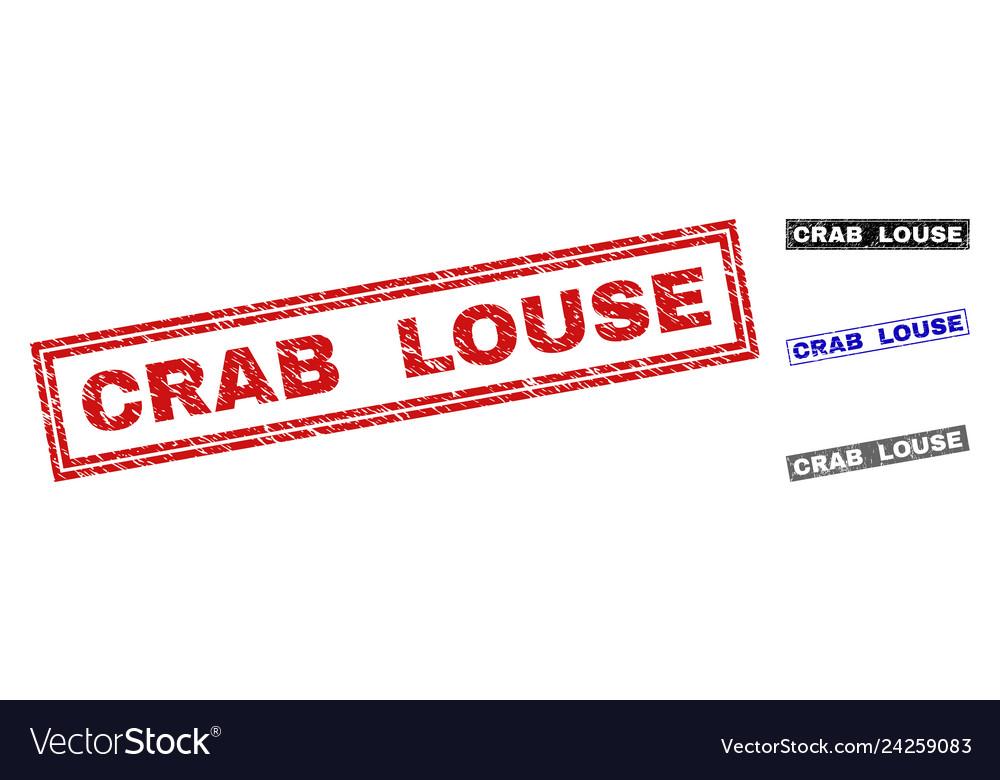 Grunge crab louse textured rectangle watermarks