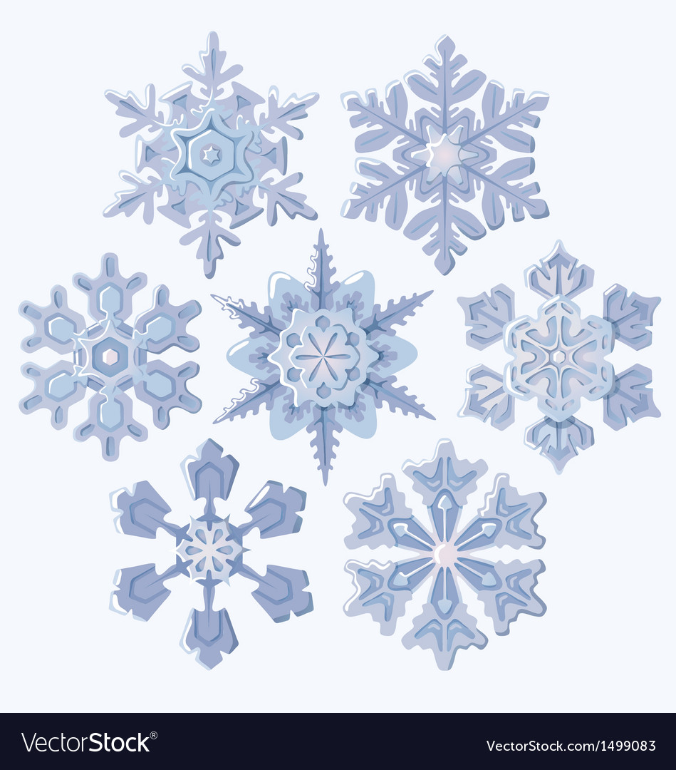Set of ornate three dimensional snowflakes icons