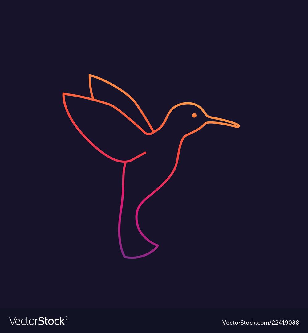 Hummingbird colibri logo linear style