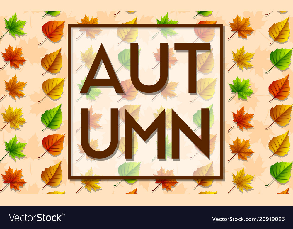 Set of autumn leaves background