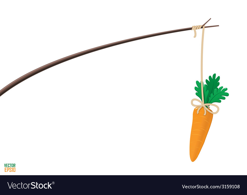 Carrot and stick motivation vector image
