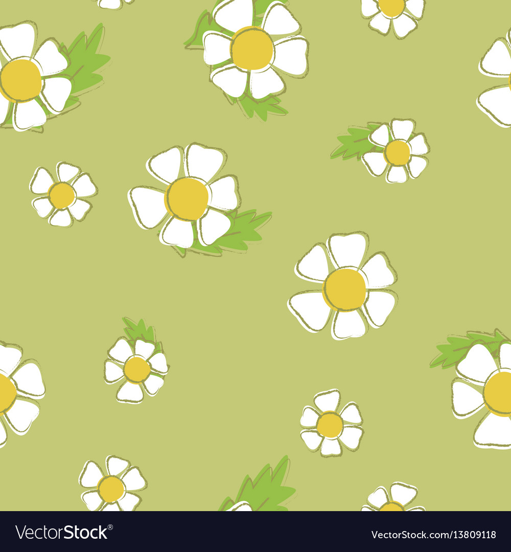 Background of chamomiles seamless pattern of
