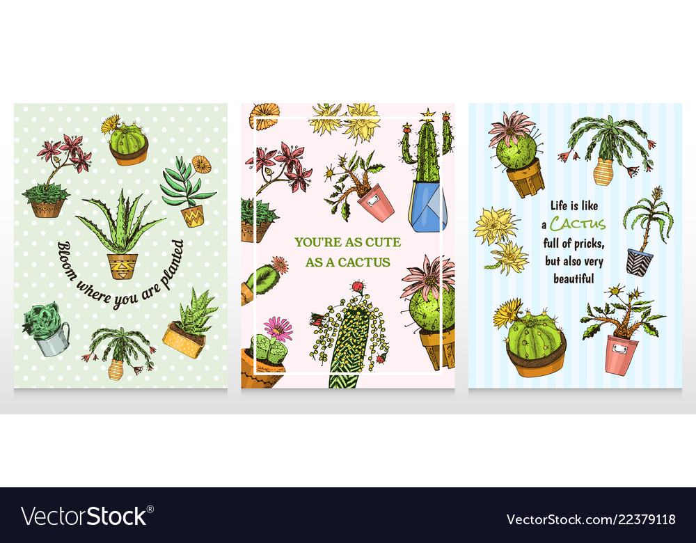 Set of cards cactus and cute template succulents