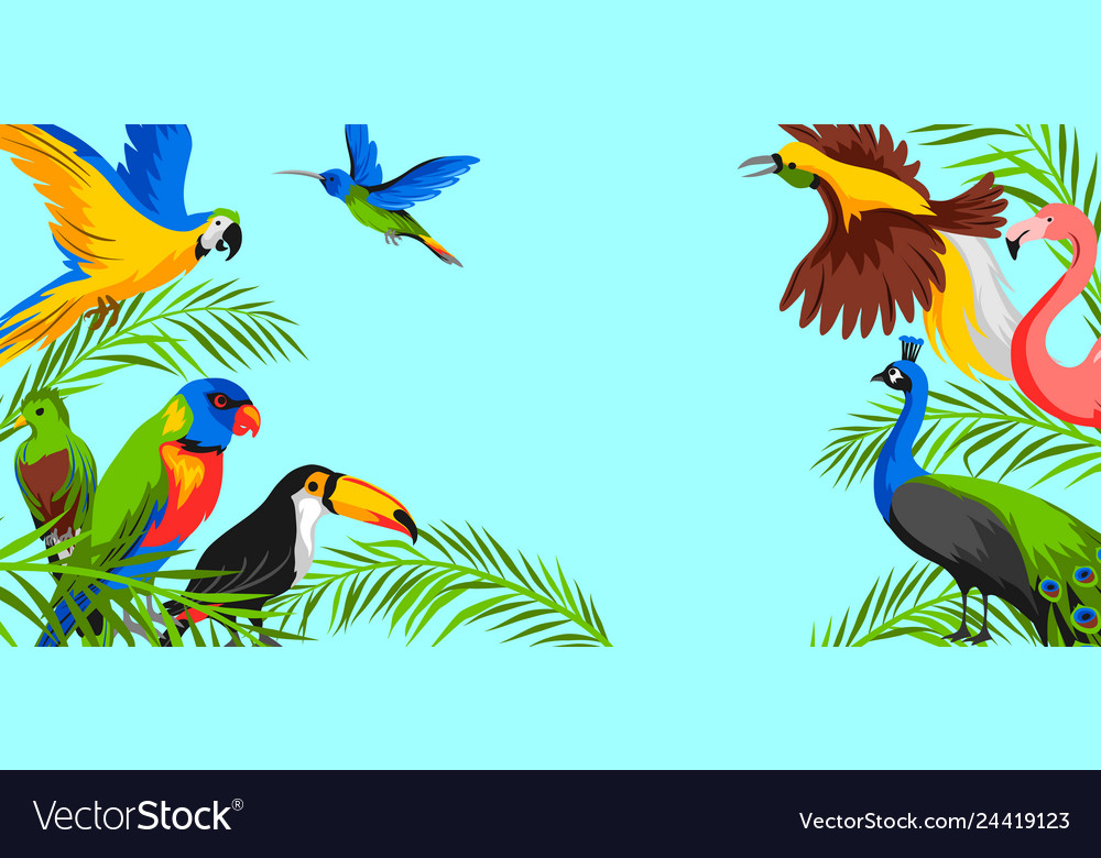 Background with tropical exotic birds