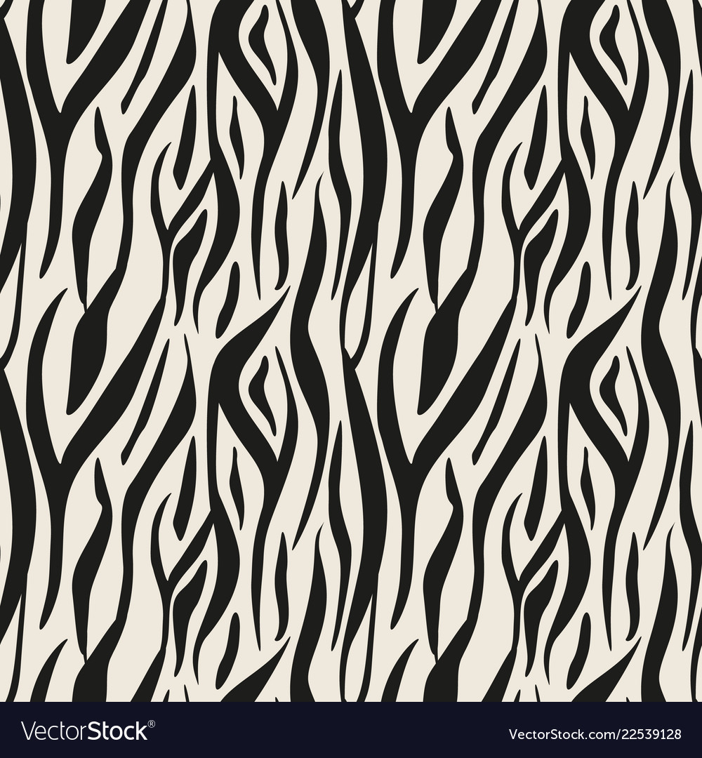 Image of: Zebra Pattern Vectorstock Animal Print Zebra Texture Background Black And Vector Image