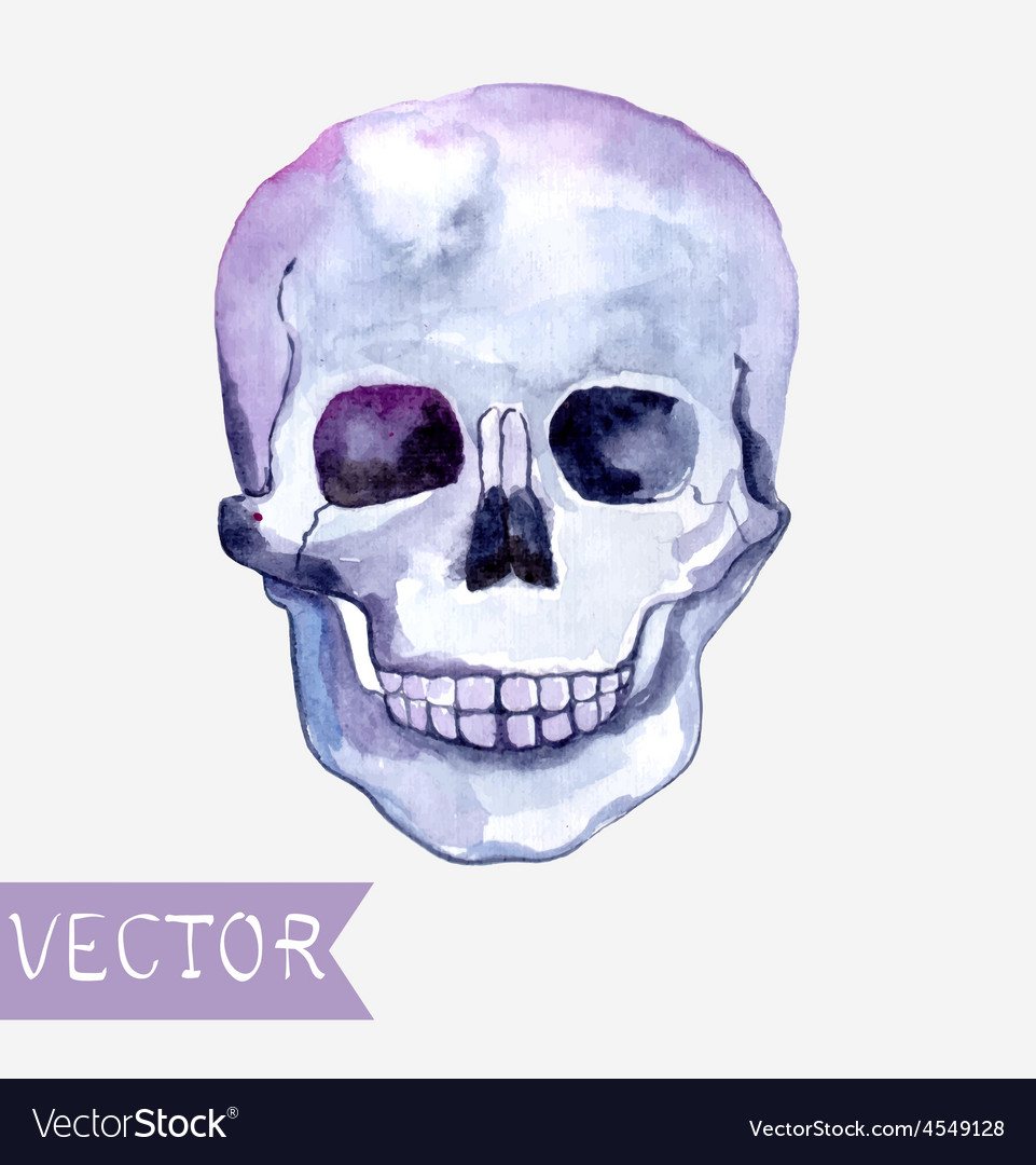 Watercolor skull background