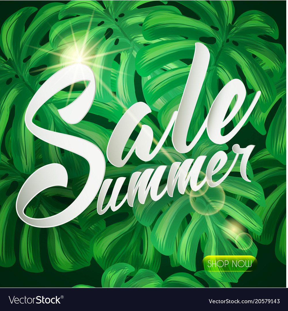 Summer sale tropical design with palm leaves