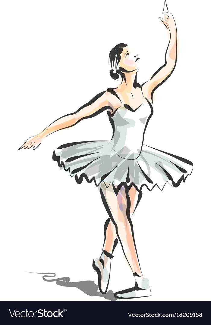color line sketch of dancing ballerina royalty free vector rh vectorstock com ballerina vector art ballerina vector image