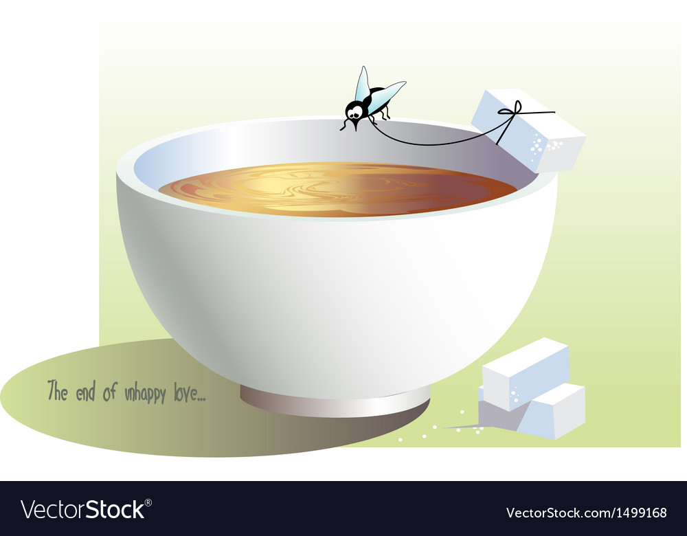 Cup and fly