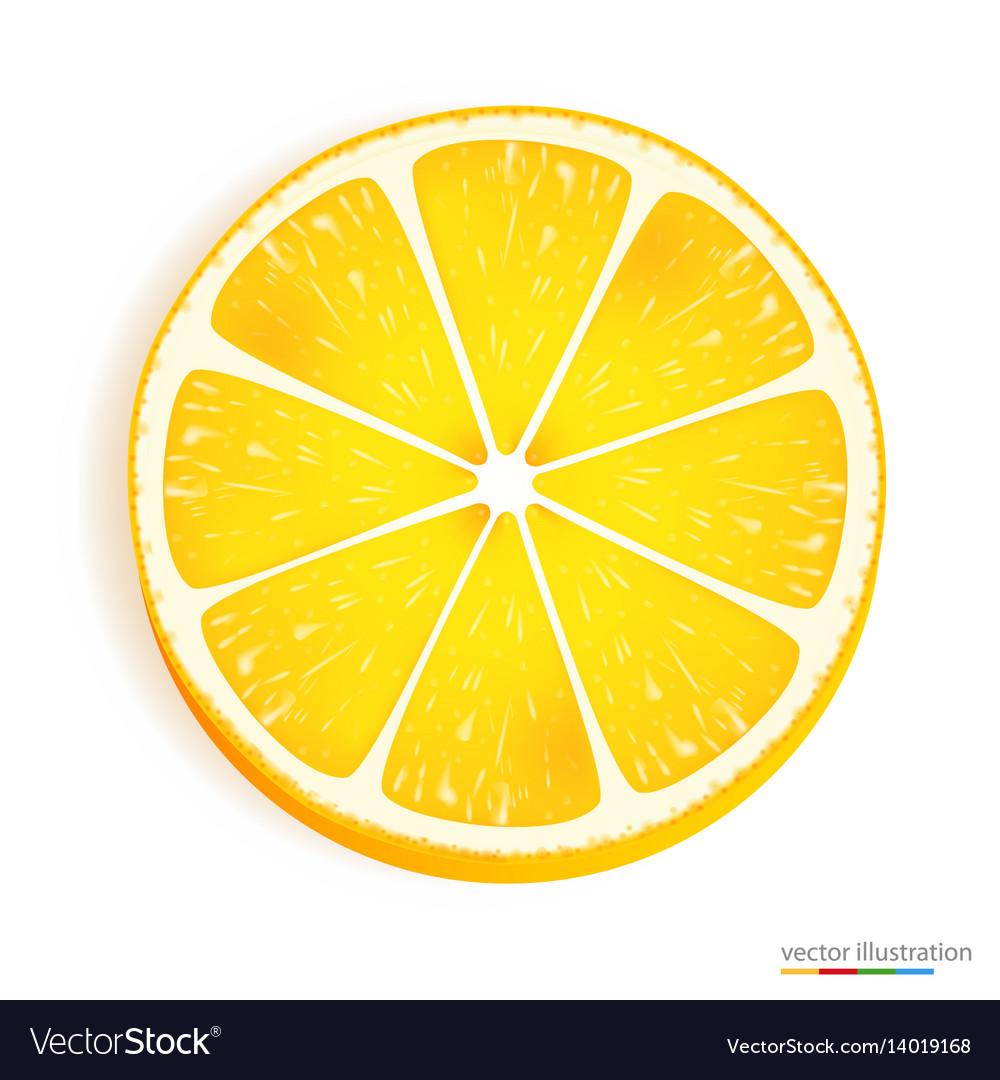 Fresh lemon slice icon on a white