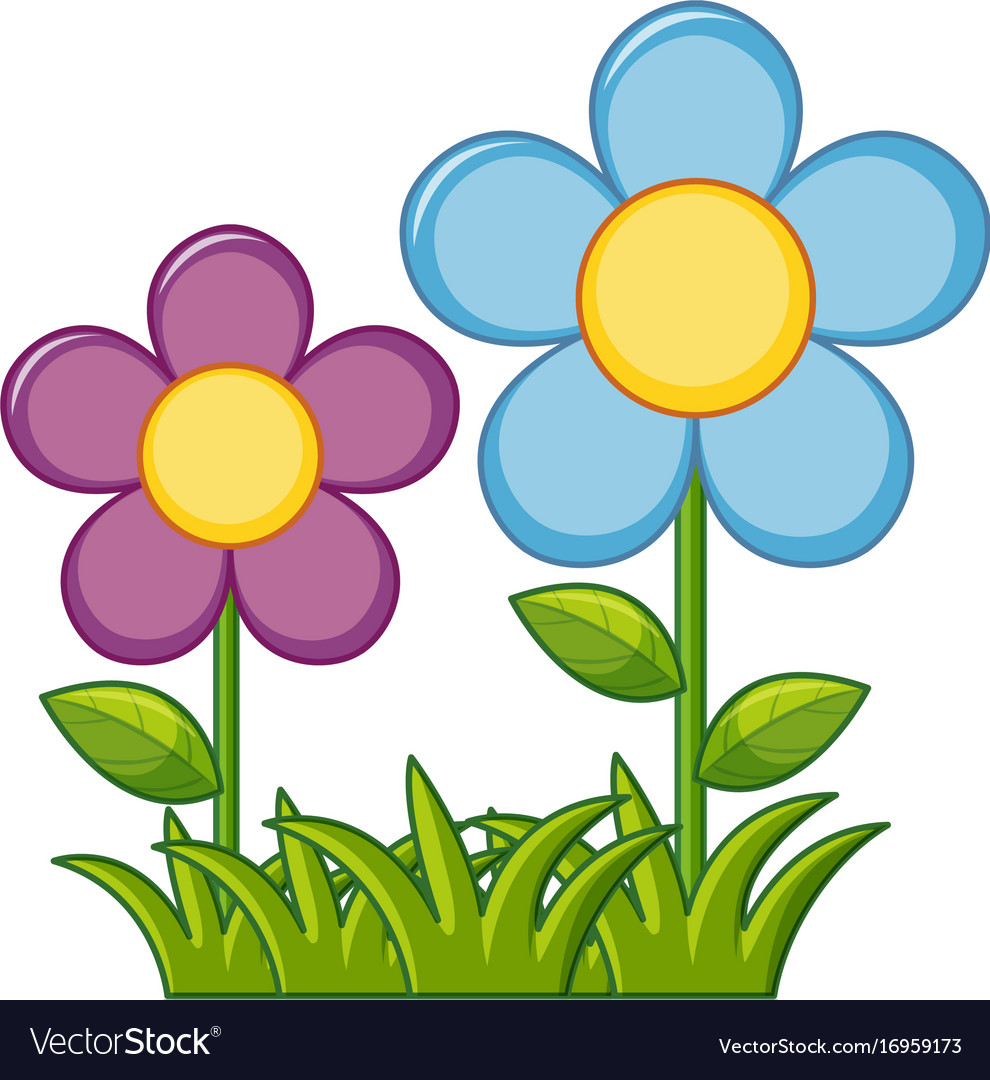 Purple And Blue Flowers In Garden Royalty Free Vector Image