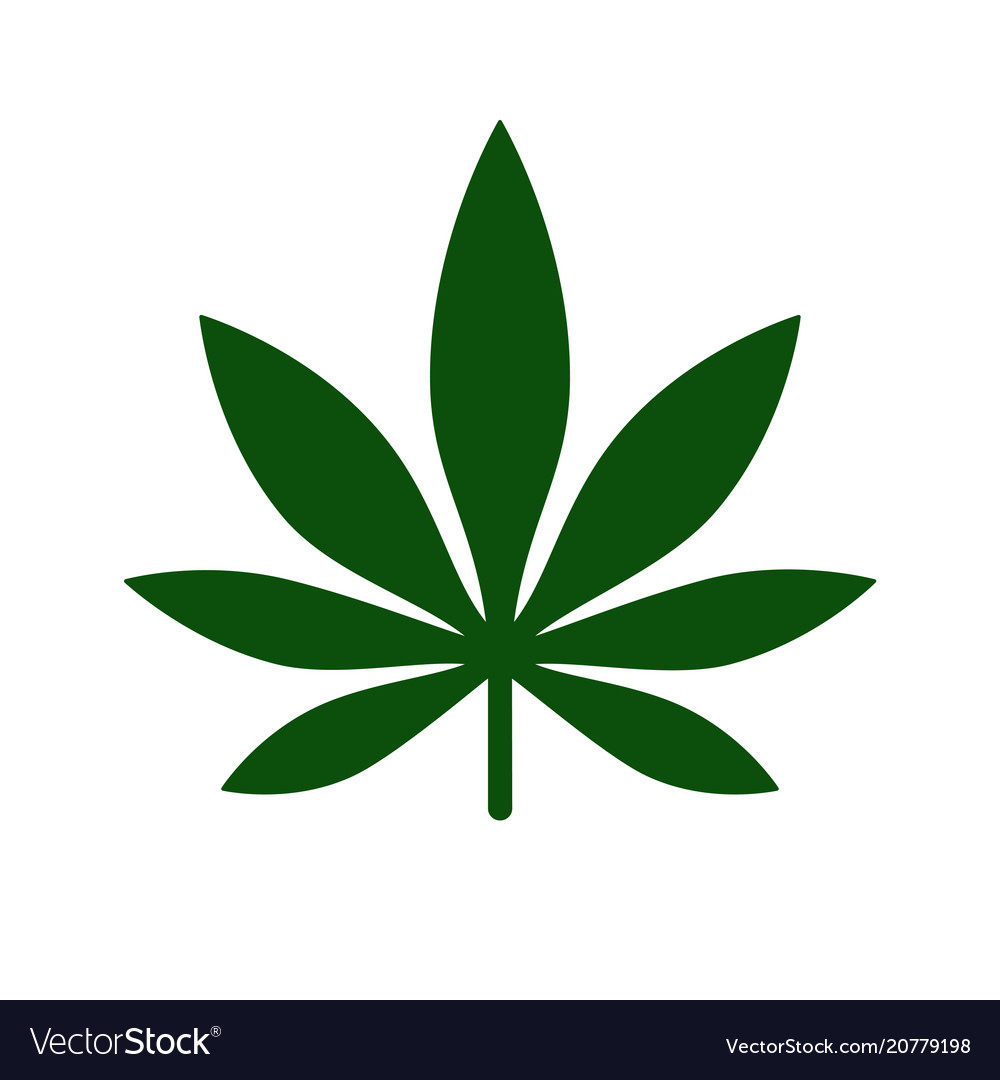 Marijuana leaf icon logo template medical